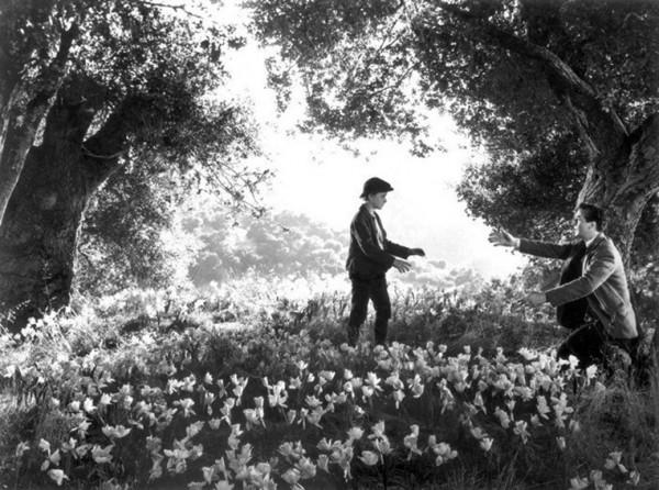 Roddy McDowall, Walter Pidgeon