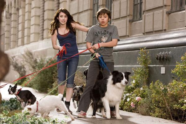 palace pour chiens 2