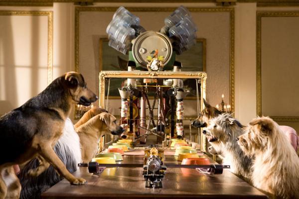 palace pour chiens 3