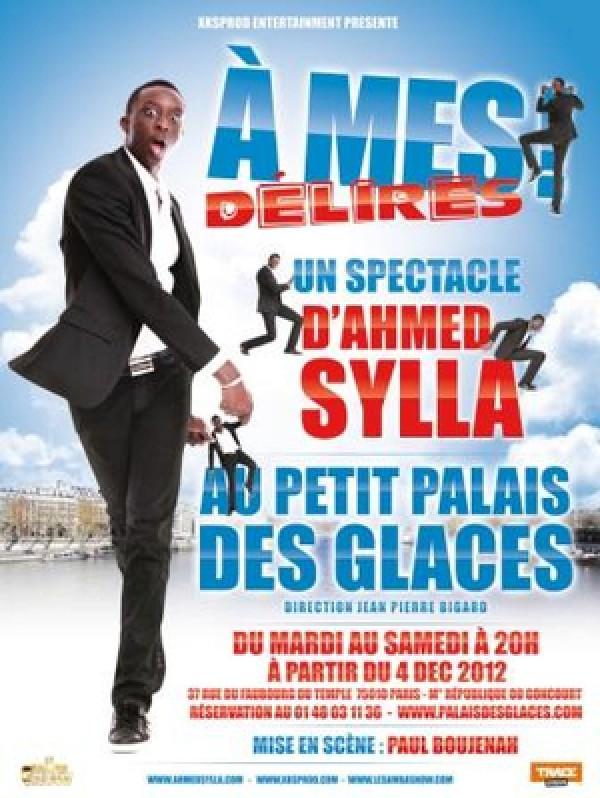 Ahmed Sylla : À mes délires