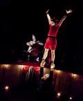 Matamore à l'Espace Cirque d'Antony