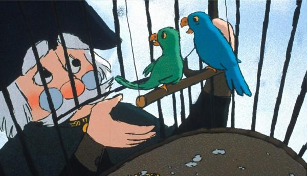 Le général, perroquets
