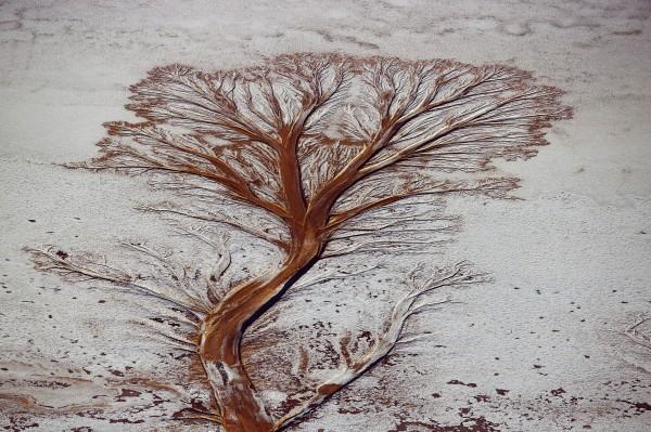 Salar d'Uyuni sur l'altiplano bolivien, Province de Daniel Campos, Département de Potosin, Bolivie