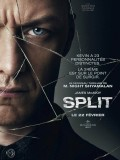 Split, Affiche