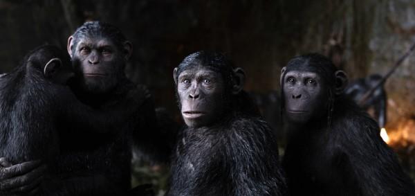 La planète des singes : suprématie, extrait