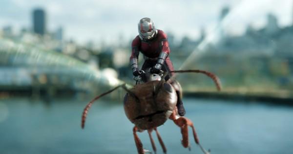Paul Rudd (Scott Lang / Ant-Man)