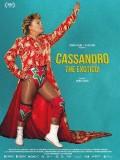 Cassandro, the Exotico !, Affiche