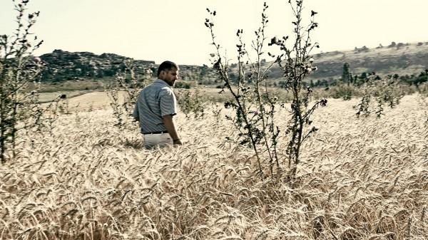 Le Grain et l'Ivraie, extrait