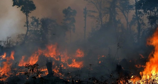 Paysage en flammes, Indonésie