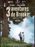 3 Aventures de Brooke, affiche