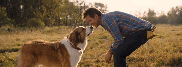 Bailey, Dennis Quaid