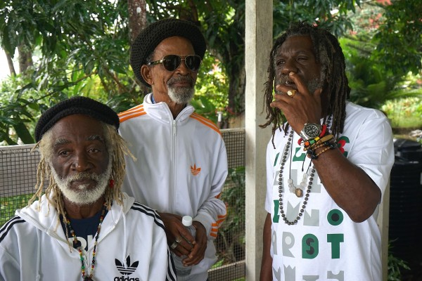 Les Viceroys, Winston McAnuff - « Electric Dread »