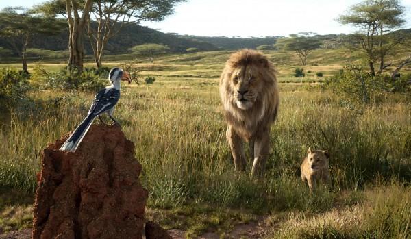 Zazu, Mufasa, Simba jeune