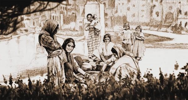 Le Char et l'Olivier, une autre histoire de la Palestine, extrait