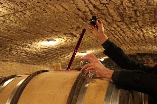 L'Âme du vin, extrait