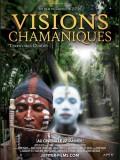Visions chamaniques : Territoires oubliés, affiche