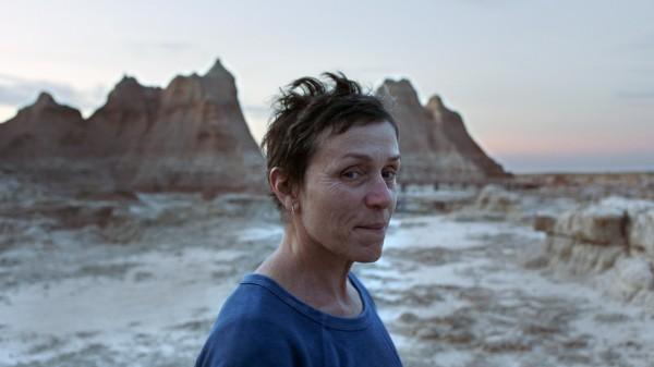 Frances McDormand (Fern)