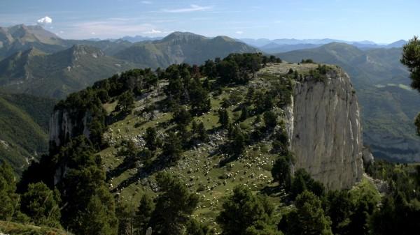 Des hauts-plateaux du Vercors aux limbes des vallées de la Drôme, Boris tente d'atteindre son idéal : mener une vie de berger, loin de la société contemporaine et de sa technologie dévorante.