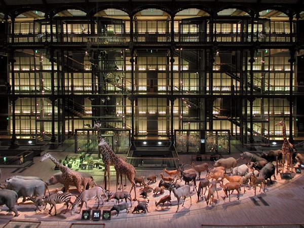 L'arche de la Grande Galerie de l'Évolution