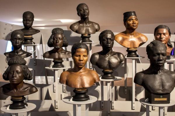 La Galerie de l'Homme - Vue de l'envolée de bustes ethnographiques