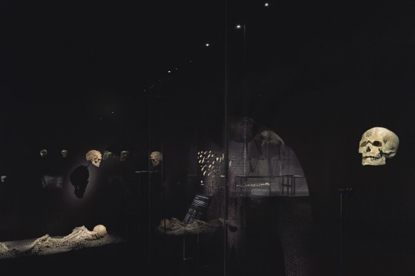 La Galerie de l'Homme - Partie 2 - L'abri des ancêtres