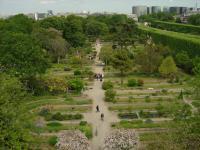Le jardin de l'école de la botanique