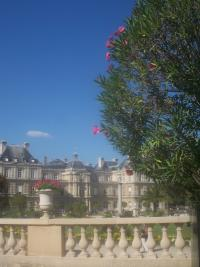 Jardin du luxembourg paris 6e l 39 officiel des spectacles - Jardin du luxembourg adresse ...