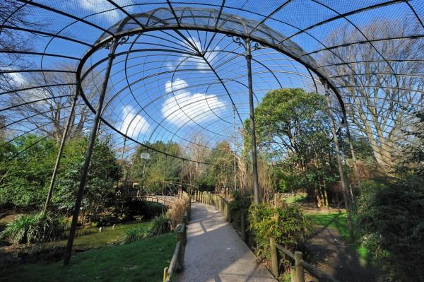 Menagerie Du Jardin Des Plantes Museum National D Histoire