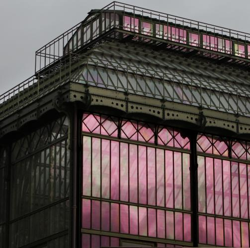 Serres Du Jardin Des Plantes, Paris 5e