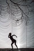 Cirque Plume 2017