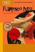 Flamenco puro au Théâtre Pixel