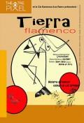 Tierra flamenco au Théâtre Pixel