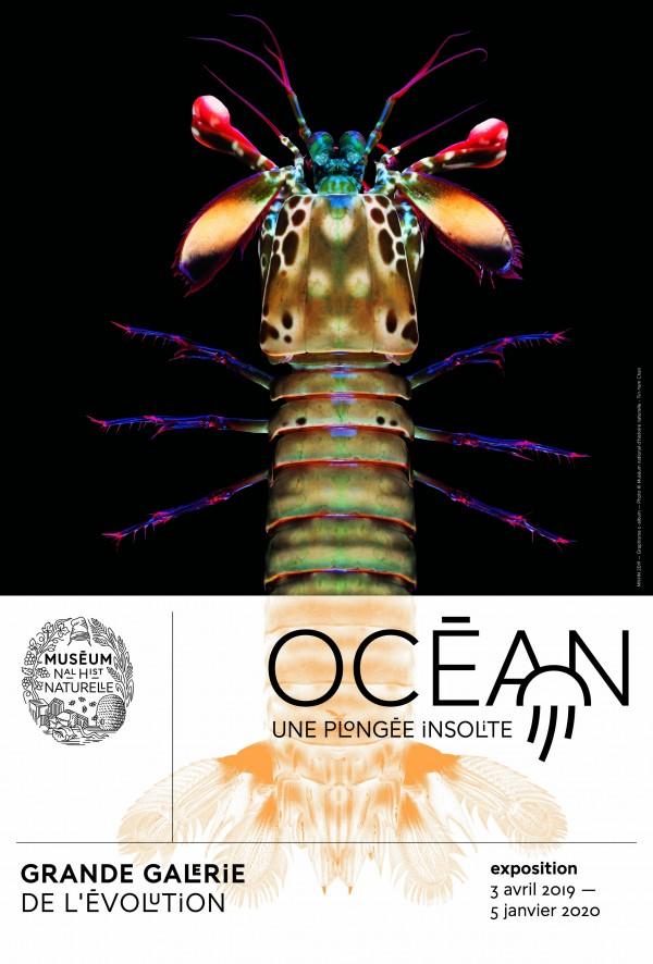 Océan - Affiche de l'exposition