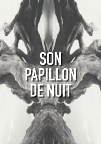 Son papillon de nuit au Lavoir Moderne Parisien