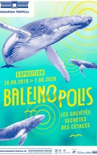 Baleinopolis à l'Aquarium tropical de la Porte Dorée