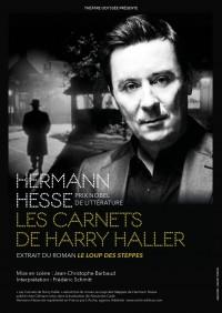 Les Carnets de Harry Haller au Théâtre du Roi René