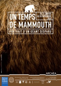 Un temps de mammouth au Musée Archéa