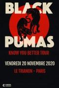 Black Pumas au Trianon