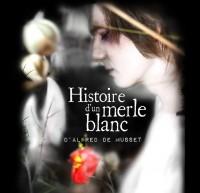 Histoire d'un merle blanc au Mouchoir de Poche